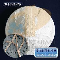 保加利亚乳杆菌 冻干乳酸菌粉