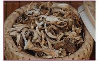 大别山特产 野生虾米菇 食用菌野山珍干货 16年新货
