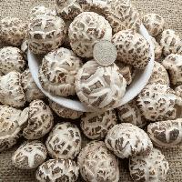 新货 大别山花菇 农家香菇干货特级野生椴木花菇