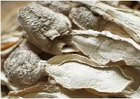 今年新货 特级鸡腿菇干货 食用菌 大别山土特产