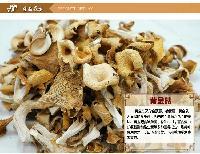 黄金菇 鸡油菌干货 榆黄蘑 大别山特产 16年新货