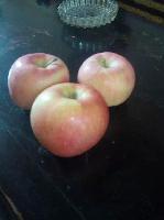陕西嘎啦苹果价格纸袋嘎啦苹果价格