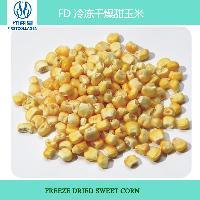 Fd冷冻干燥甜玉米