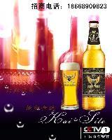 啤酒厂家诚招台州大瓶啤酒经销商