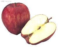 供应明德--苹果油香精