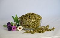 大叔的田绿豆农家自产毛绿豆绿豆纯天然绿豆汤*