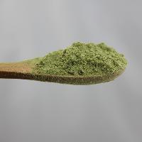 芹菜粉基地种植天然品质保证