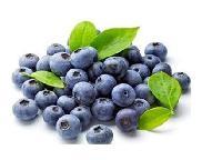 兰州沃特莱斯供应  蓝莓粉   速溶   包邮