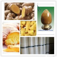 优质干姜提取物 天然植物提取物 厂家直销