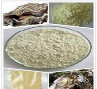 优质牡蛎提取物