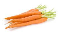 胡萝卜提取物  10:1   胡萝卜汁粉   全溶 速溶