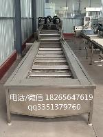 QX-6水果秋葵蔬菜连续清洗线 大产量低能耗