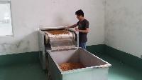 黄粉虫干燥设备,黄粉虫烘干设备,昆虫烘干机