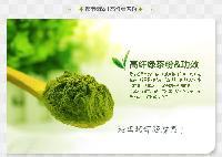 绿茶粉 绿茶提取物 厂家直销 现货包邮