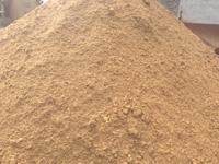 营养啤酒酵母粉