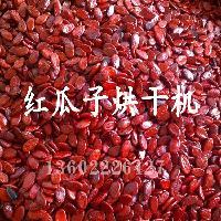 三次废热回收红瓜子烘干机