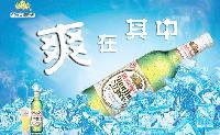 批发 百威劲爽啤酒355ml*24
