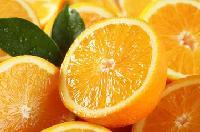 10:1 橙子提取物   批发价格   橙皮甙、柠檬酸