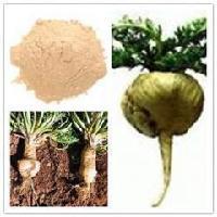 优质玛卡碱 玛卡提取物 天然植物提取