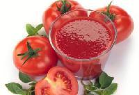 番茄红素 番茄提取物 天然色素添加