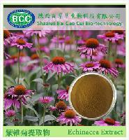 天然 紫锥菊提取物 厂家免费包邮