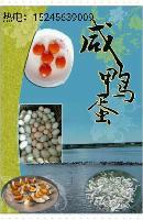 【大桦树河】绿色生态鸭蛋