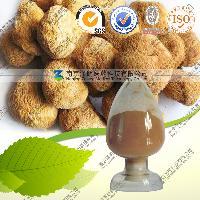 猴头菇提取物、猴头菇粉