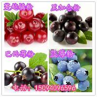 桑葚营养粉代餐粉药食同源中药粉