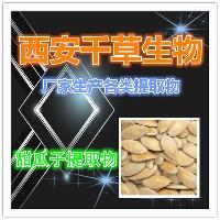 甜瓜子提取物 纯天然浓缩粉