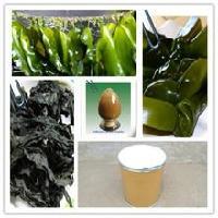 昆布多糖 海带提取物 厂家直销 品质保证