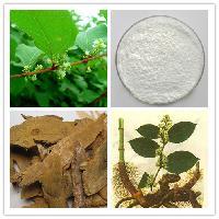 优质 白藜芦醇98%  葡萄皮提取物    现货供应