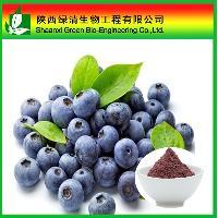 厂家现货供应蓝莓冻干粉  优质的蓝莓冻干粉