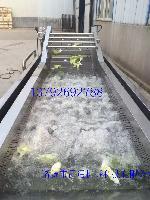 猪蹄毛刷式清洗机生产厂家