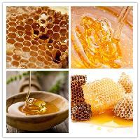 蜂蜜食用酵素粉
