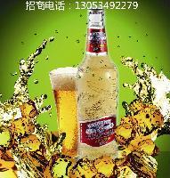 山东啤酒厂家招商直销特价啤酒诚招浙江嘉兴|杭州地区代理商