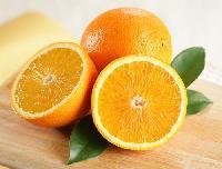 赣南脐橙10斤装橙子诚招全国各地代理商 分销商