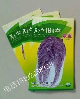 紫白菜种子韩国进口杂交一代品种