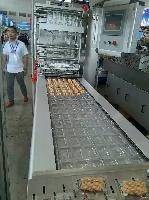 牛肉干真空包装机-食品真空包装机价格