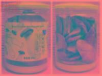 杏鲍菇脆片