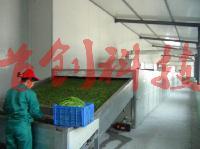 大型豇豆专用干燥机