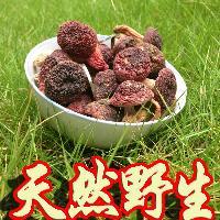 云南高原特产野生红菇干货正宗大红菌红色菌云南普洱特产