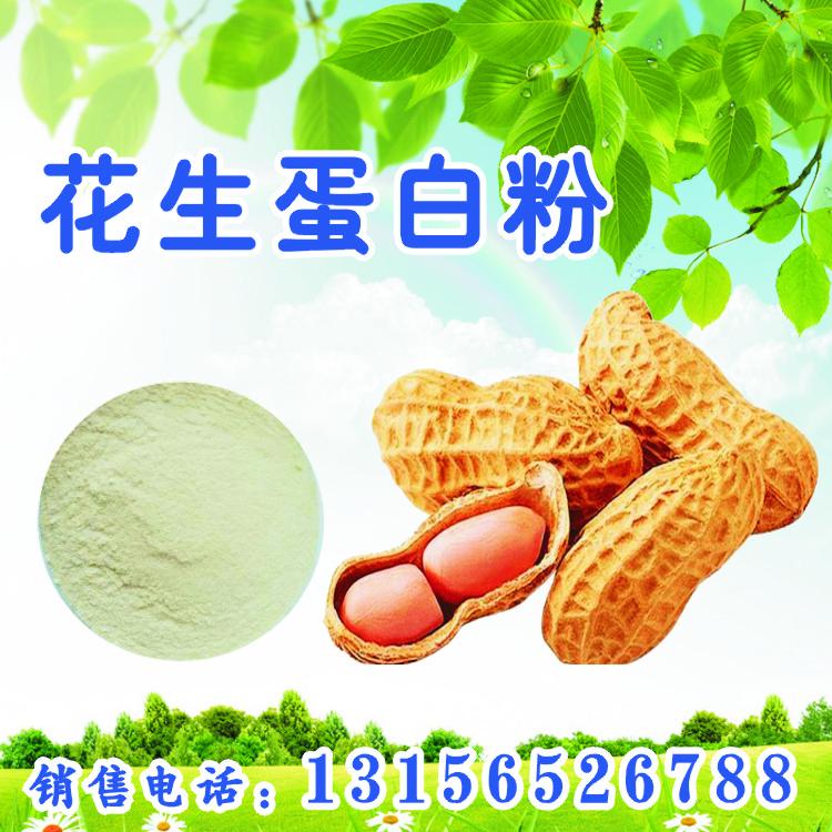 花生蛋白粉生产厂家