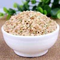 糙米粉 营养粉代餐粉