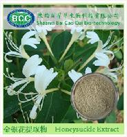 清热解毒 金银花提取物 98%绿原酸厂家现货供应