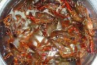 成都批发小龙虾,对虾,鲍鱼,海参,