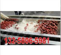 新鲜蔬菜气泡清洗机  辣椒、胡萝卜清洗机