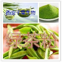 绿茶提取物 绿茶粉 绿茶浓缩粉