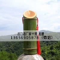 品味客家竹子酒