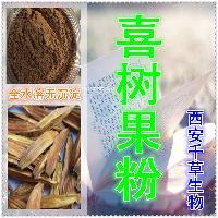 喜树果原粉 纯天然植物提取全水溶厂家生产喜树果粉