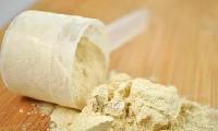 食品级乳清蛋白粉价格